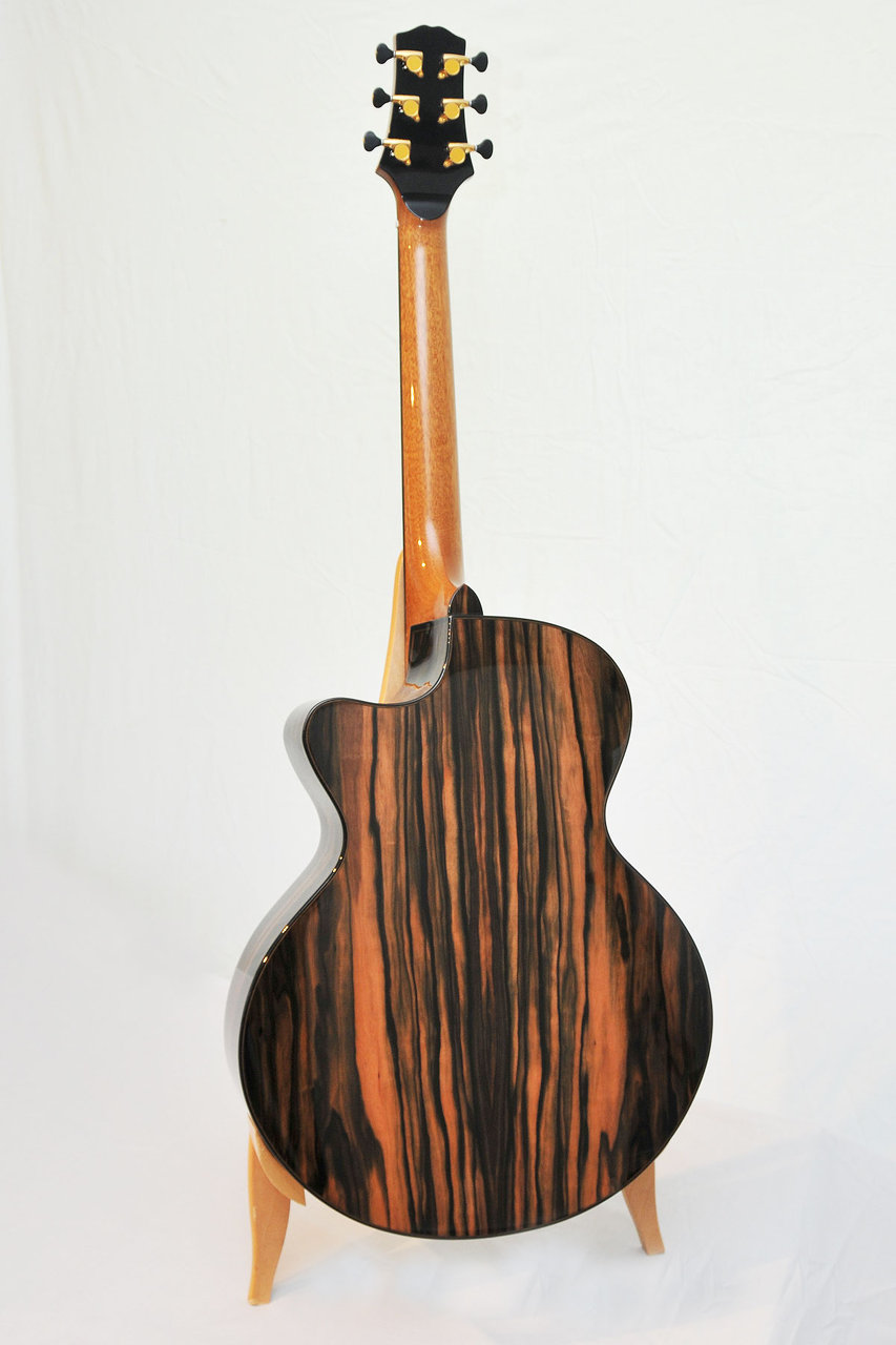 Bamburg Custom Guitar Macassar Ebony