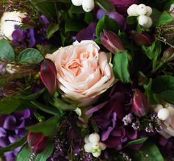 Violett charm8 (1 von 1)