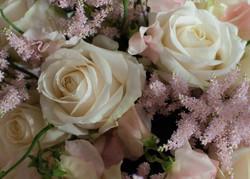 White Rose_ Astilbe_3 (1 von 1)