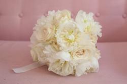 White Rose_ Astilbe_4 (1 von 1)