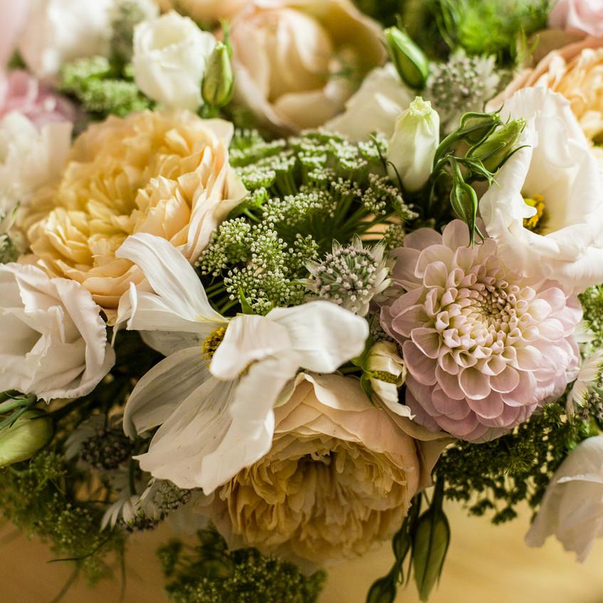 Blumen-5 (1 von 1)