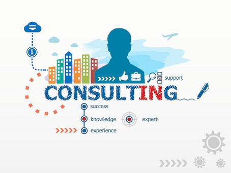 Why you need an independent ERP Software Consultant ?