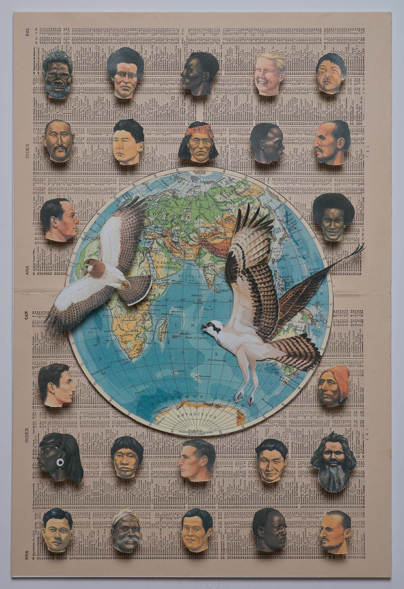 Heads & Birds