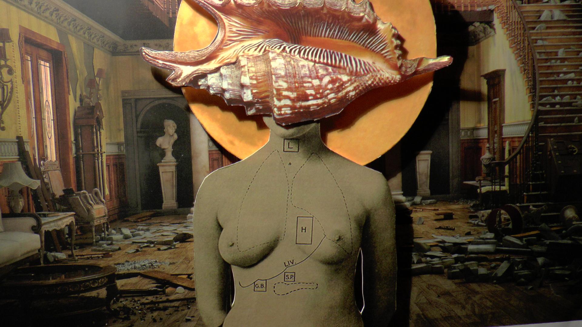 She-shell (2014)