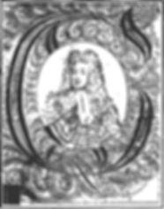 45b.jpg