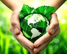 sustainability photos.001.jpeg