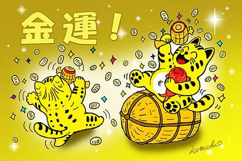 POSTCARD「金運ラッキー!(No.089)」5枚セット