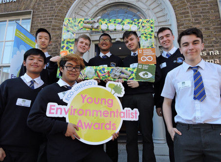 #YEA19 Semi-Final ECO Dens: Day 2, Leinster