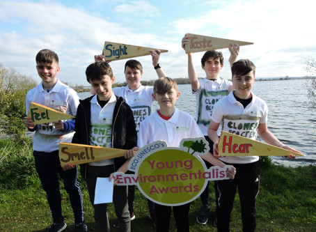 #YEA19 Semi-Final ECO Dens: Ulster