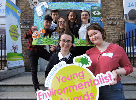 #YEA19 Semi-Final ECO Dens: Day 4, Leinster
