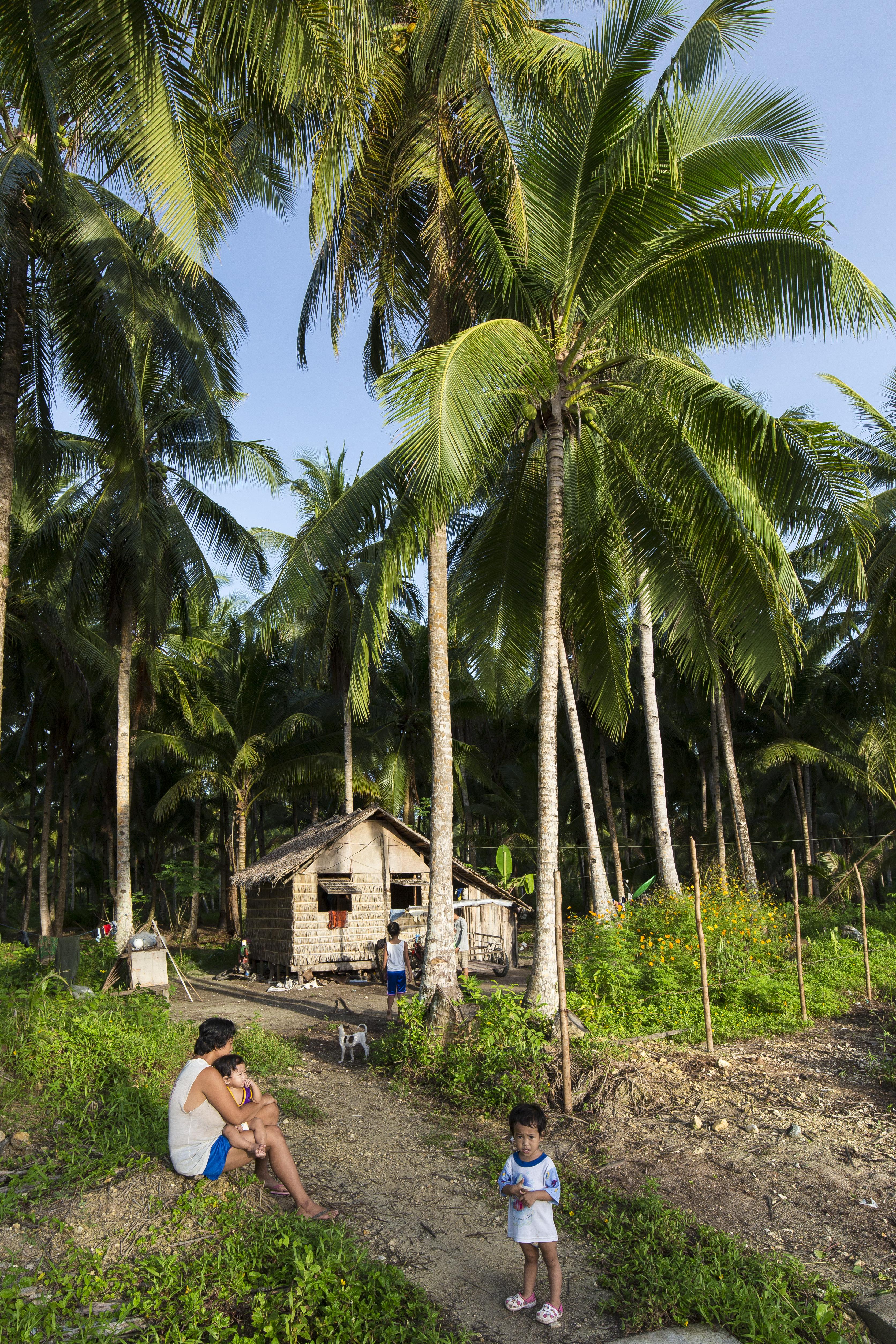 Bahay Kubo - Native Huts