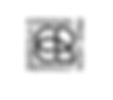 logo marca leon.png