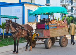 Horse drawn fruit stand in Vinales