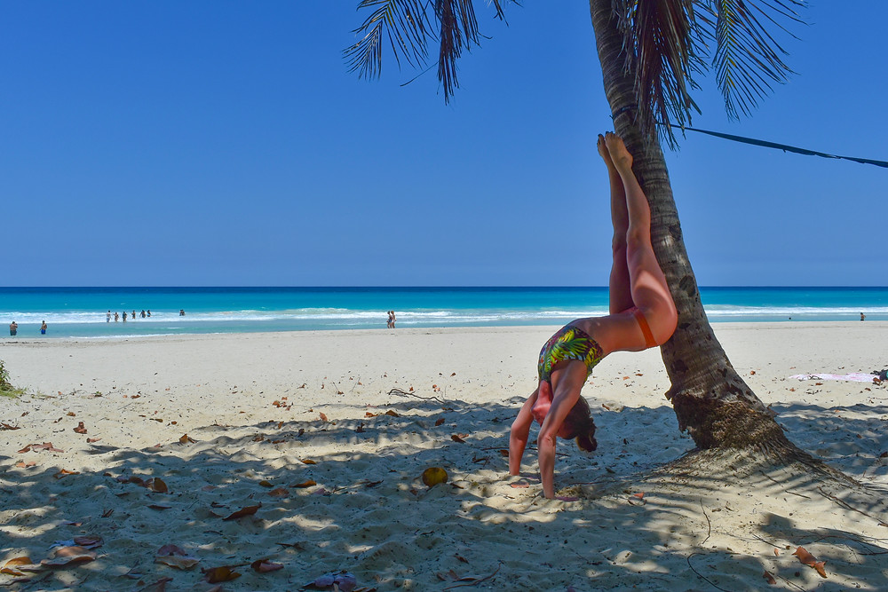 backbend against a palm tree