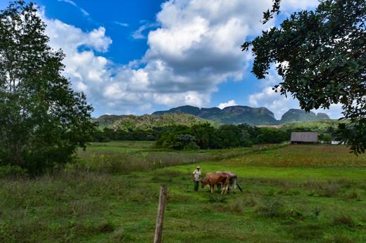 Views via horseback in Vinales
