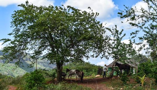 Vinales valley