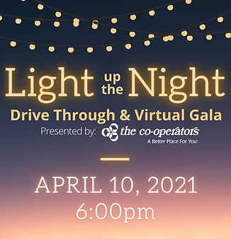 Light up the Night website.png