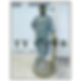 Ty Cobb AUCTION website.png