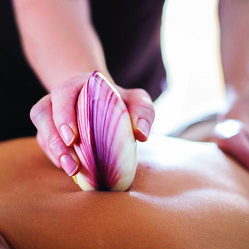 Massage aux coquillages chaud