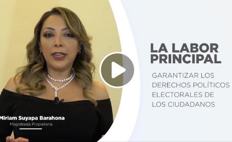 Video informativo del Tribunal de Justicia Electoral.