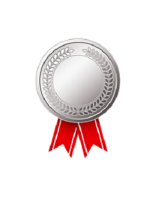 icon-silver.png