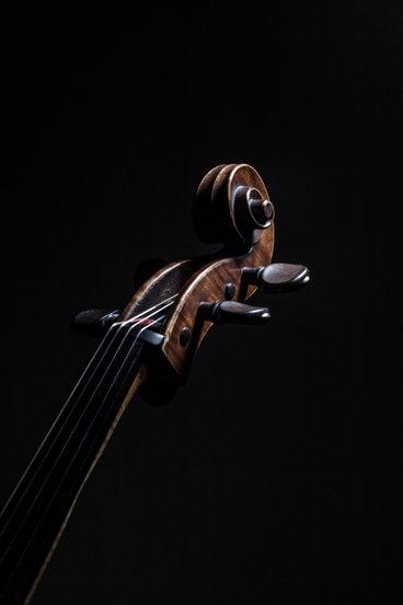 Constantin_Macherel_cello.jpg