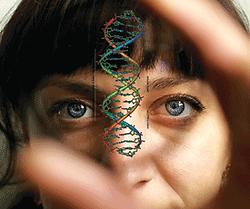 Scientist examining DNA