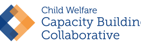 Federal Center Cites ECAP Foster Care Software in Innovations Series