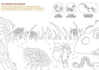 Coloriage - Insectes - dipongo.jpg