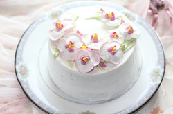 胡蝶蘭デコレーションケーキ