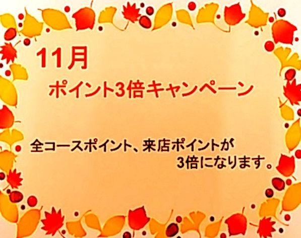 1603701014762_edited.jpg