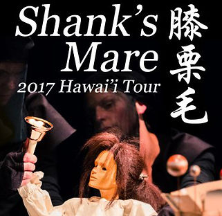 Shaks mare Hawai tour-768x432_.jpg