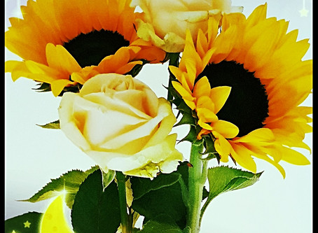 Are You a Sunflower?