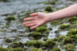 1 Lead image-bodies of water.jpg