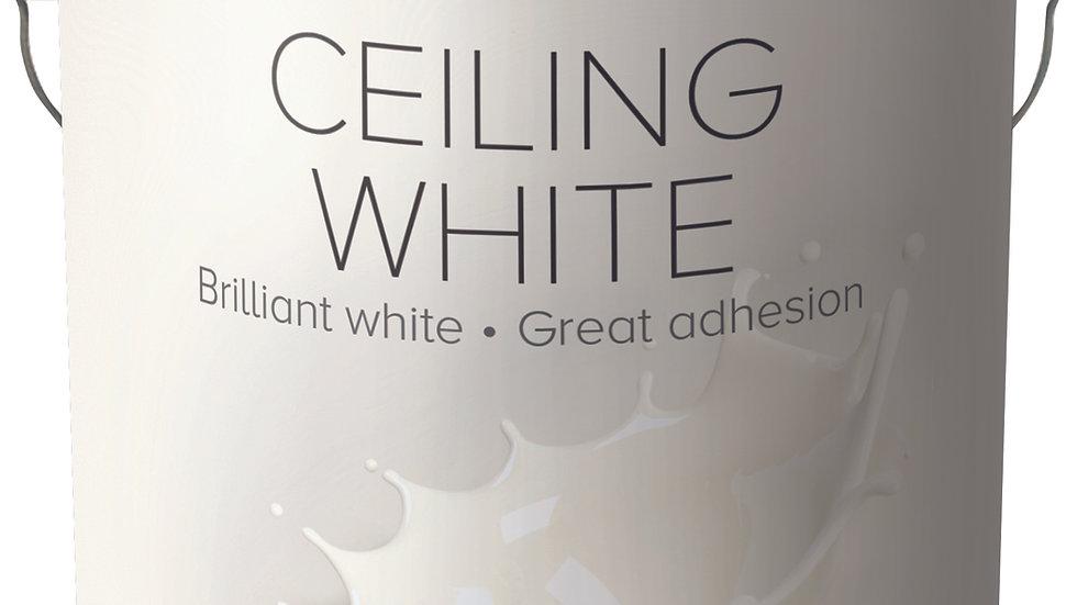 555 California Ceiling White