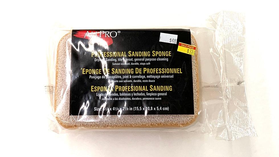 Professional Sanding Sponge