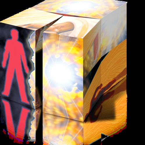 EVANGE-CUBE (E-Cube)