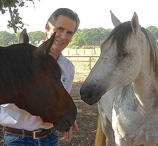 Flowtrition with Dr. Lance Wright @ Hy Court Farm | New Ulm | Texas | United States
