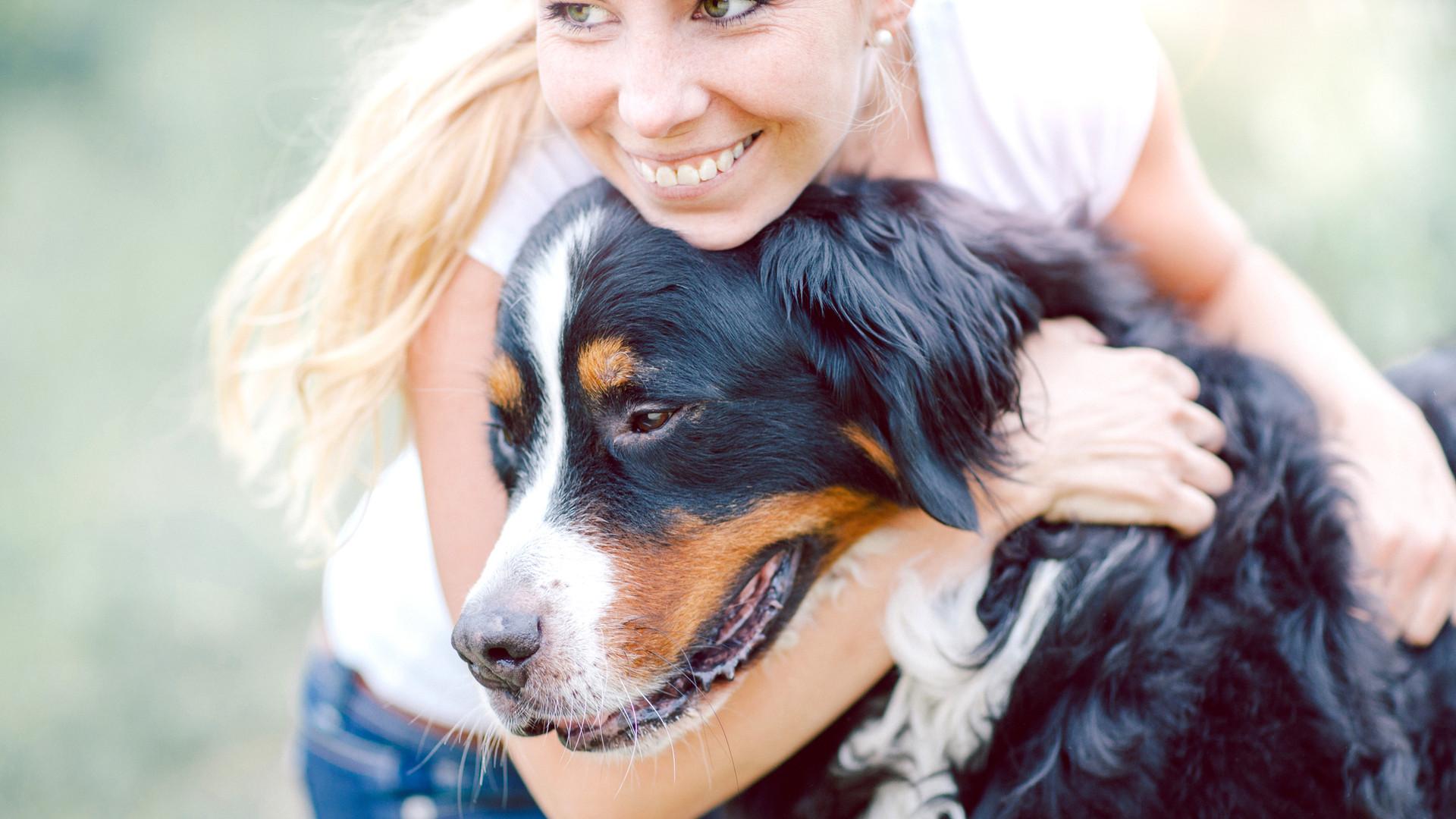 veterinarian palatine