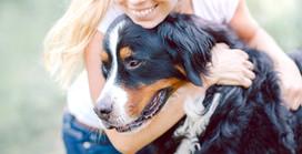 ¿Los perros sienten amor? ...continuación...