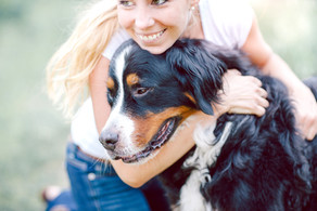 Stress, Cancer and Your Power to Help Your Pet