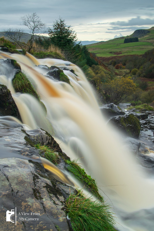 Loup of Fintry_6215