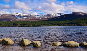 Loch Morlich, Cairngorms (8930)
