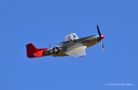 North American P-51D Mustang, East Fortune (7523)