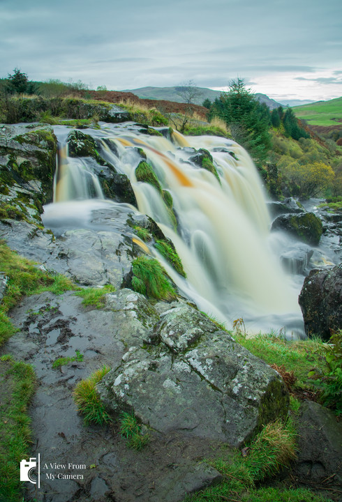Loup of Fintry_6209