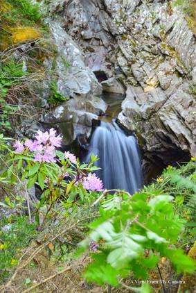 Falls of Bruar, Blair Atholl (2395)