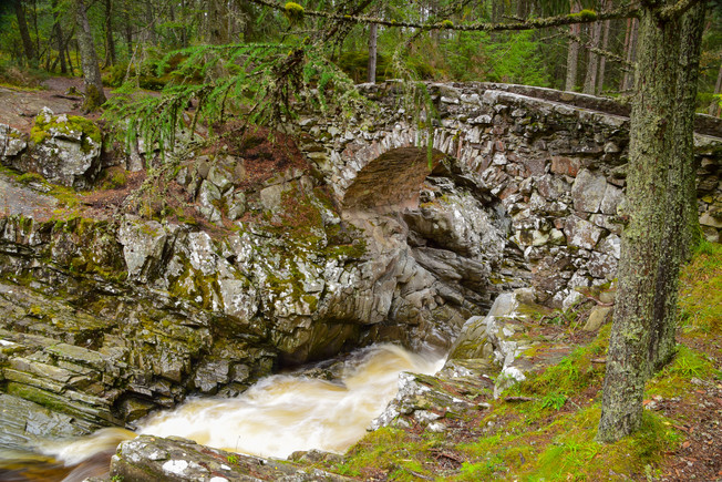 Falls of Bruar (Lower Falls)_2131