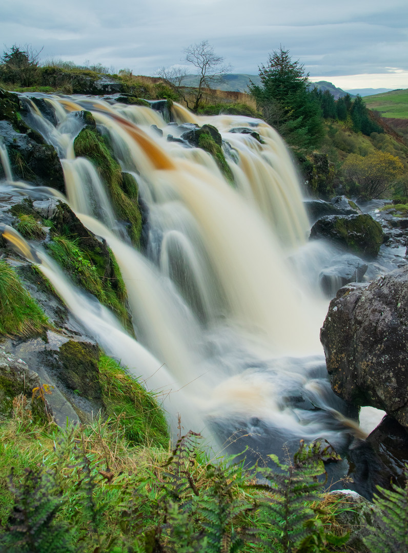 Loup of Fintry_6222