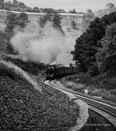 SRPS Railtours, BlackFive 44871 (8087)