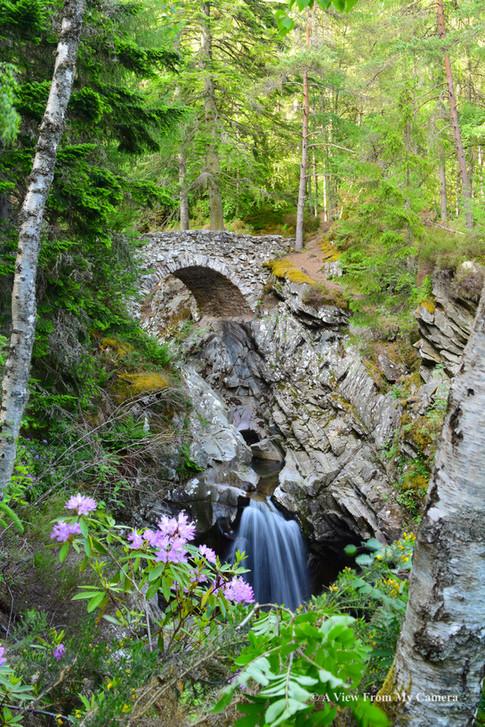 Falls of Bruar, Blair Atholl (2392)
